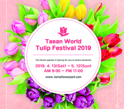 2019 Taean World Tulip Festiva